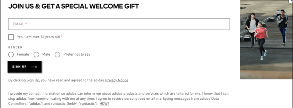 Email Marketing Tips Example Adidas